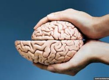 stop your brain from shrinking